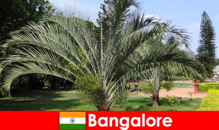 Bangalore angenehmes Klima das ganze Jahr für jeden Ausländer eine Reise Wert