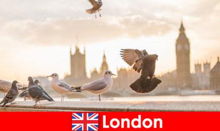 Sehenswerte Orte in London für Internationale Fremdstämmige Besucher