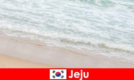 Jeju mit seinem feinen Sand und sein klares Wasser ein idealer Ort für Familienurlaub am Strand