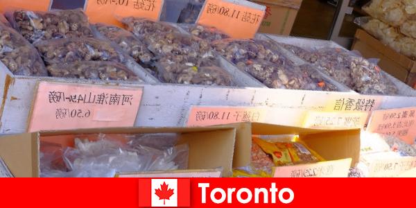 Toronto und seine besonders vielfältige Gastronomie lässt keinen Reisenden hungern