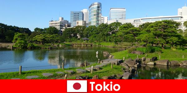 Alte und neue Traditionen in Tokio Japan genießen Touristen hautnah