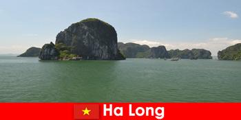 Schiffstouren für Urlauber zu den Felsgiganten in Ha Long Vietnam