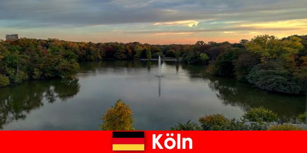 德国科隆自然公园的森林山和湖泊自然之旅