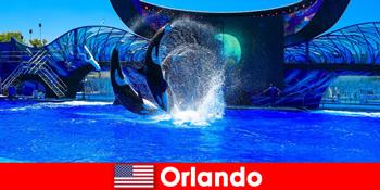 Individuelle Reise für Ausländer in Orlando Vereinigte Staaten buchen