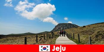 Touristen wandern durch die fantastische Naturlandschaft in Jeju Südkorea