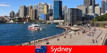 Panoramablick über die ganze Stadt Sydney Australien für Besucher aus aller Welt