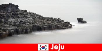 Ausländer erforschen beliebte Ausflüge in Jeju Südkorea