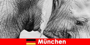 Besonderer Trip für Besucher im originellsten Zoo in Deutschland München