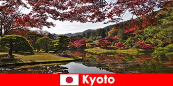Auslandsreise nach Kyoto Japan zur berühmten herbstlichen Laubfärbung